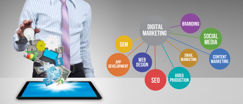 Freelance SEO Services Providers in Hyderabad